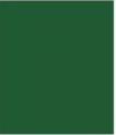 272-green super matt