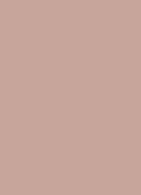 farba 228 Cappuccino super mat